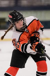 _DLS9398WBLgirlsHockeyIrondale2019