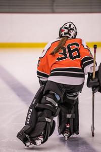 _DLS9470WBLgirlsHockeyIrondale2019