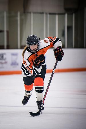 _DLS3301GirlsHockeyVForestLake2020
