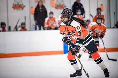 _DLS3381GirlsHockeyVForestLake2020