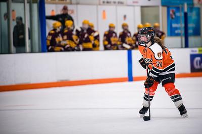 _DLS3407GirlsHockeyVForestLake2020