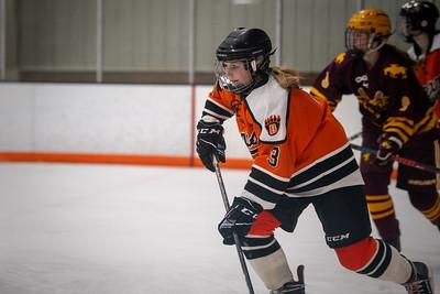 _DLS3223GirlsHockeyVForestLake2020