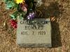 howard078