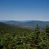 Bretton Woods from Mount Field.