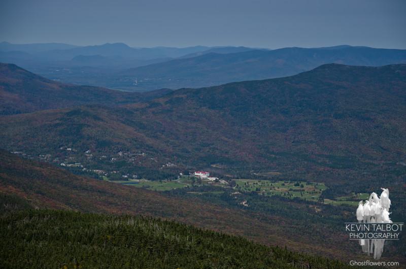 Zoom of Bretton Woods from Mount Field.
