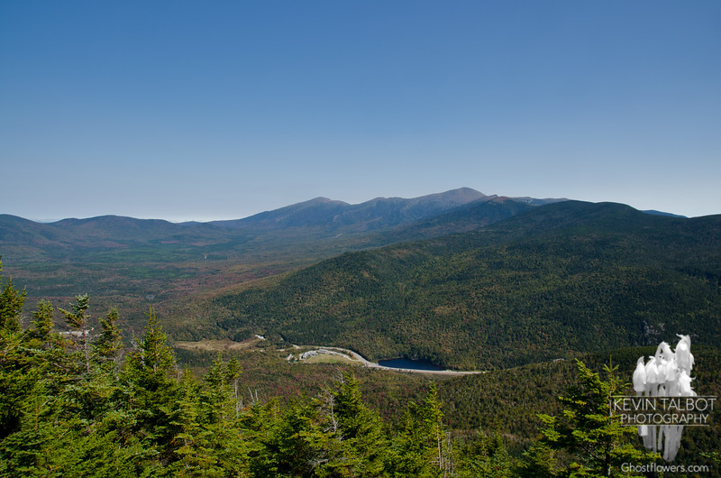 Northern Presidentials from Avalon.