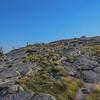Windswept plateau on South Baldface.