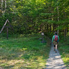 The trail from Grafton Notch follows the AT to the Baldpates.