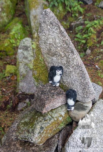 Woolies on her cairn.