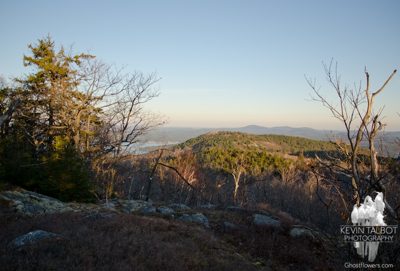 View to Mount Major from North Straightback.