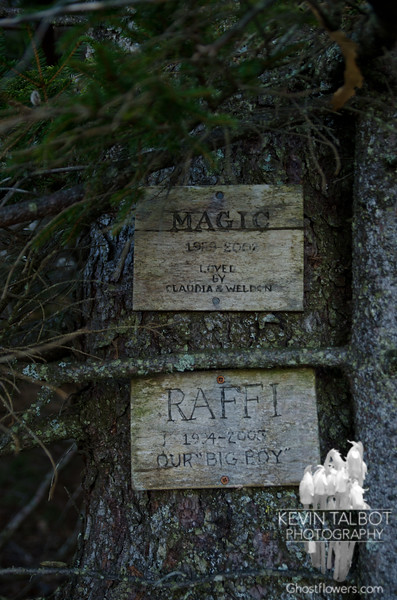 Memorial on Rand Mountain.