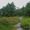 Belknap Range Trail.