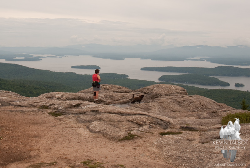 Emma cools off in a puddle on Mount Major.