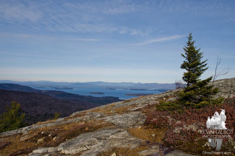 View north along the ridge.