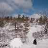 Emma leads the way through fresh snow.