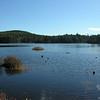 Round Pond 3.