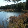 Round Pond 4.