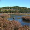 Round Pond 1.