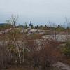 On the summit of Straightback.