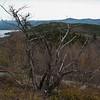 View towards Mount Major.