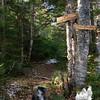 Black Mountain Cabin Trail.