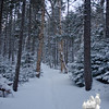 Gorgeous trail!