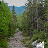 Tuckerman Ravine Trail.