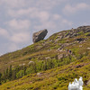 Hikers approach Glen Boulder.
