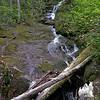 Mossy Falls 1.