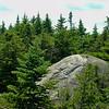 Spruce and granite. JT