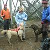Sheep and Tuckerman make friends with Judy.