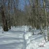 Signal Ridge Trail.
