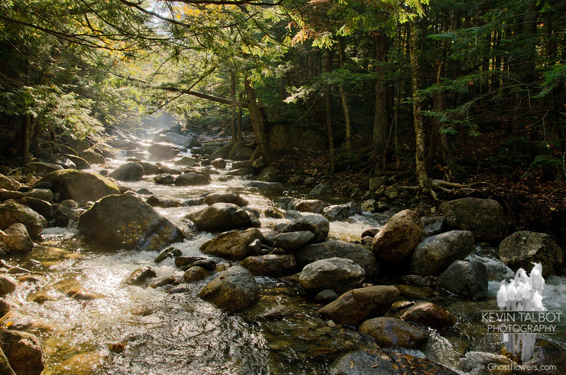 Early morning light on 19 Mile Brook.