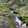 Mossy cascade along the Carter Dome Trail.