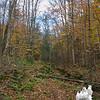 Start of the Devil's Hopyard Trail.