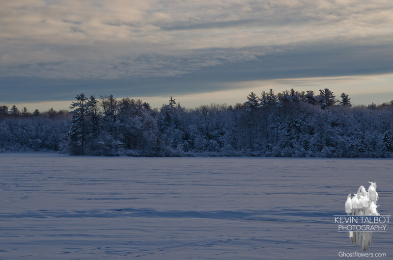 Early light on the Powow after the storm...