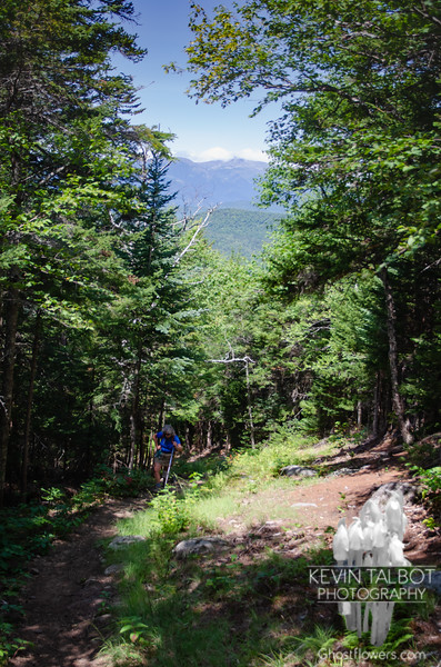 A view back towards Washington from the trail...