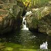 Emerald Pool 3.