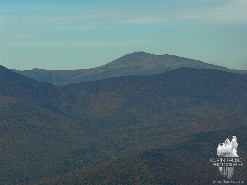 Mount Washington from East Royce.