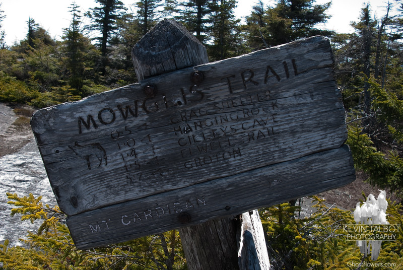 While researching past visits to this hill we were shocked to find we hadn't been in 11 years! This is the same trail sign from a trip in good weather 11 years prior...