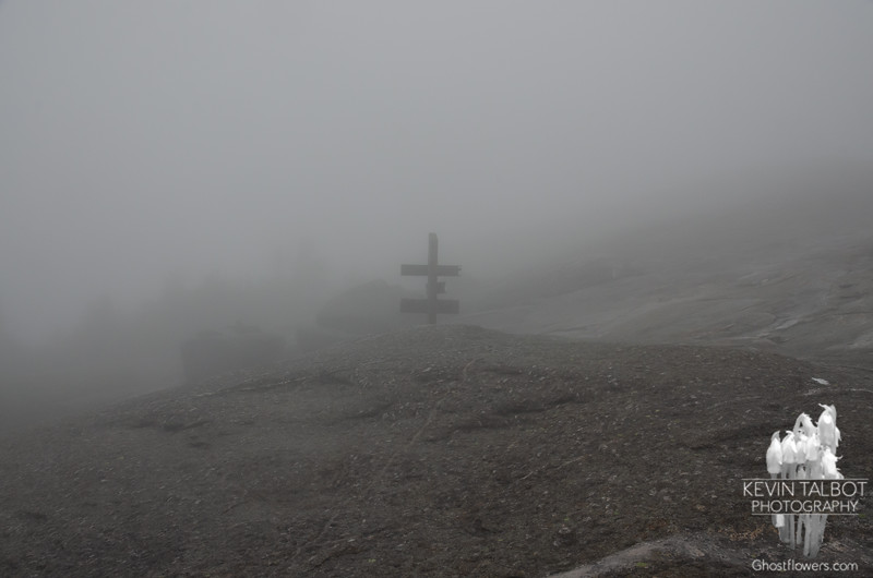 Finding our way down in the fog...