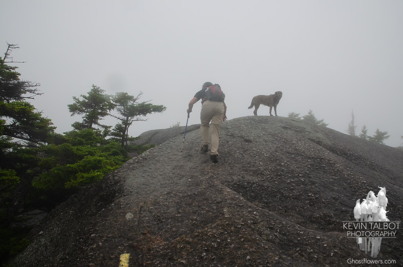 Getting steeper & slicker, luckily it was better traction than it looks because of the makeup of the rock- to me it seemed very similar to the quartzite/mica-schist of the Northern Presidentials, extremely rough & abrasive... as you will see...