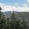 The top of Wildcat Ski Area