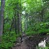 Emma on the Hancock Notch Trail.