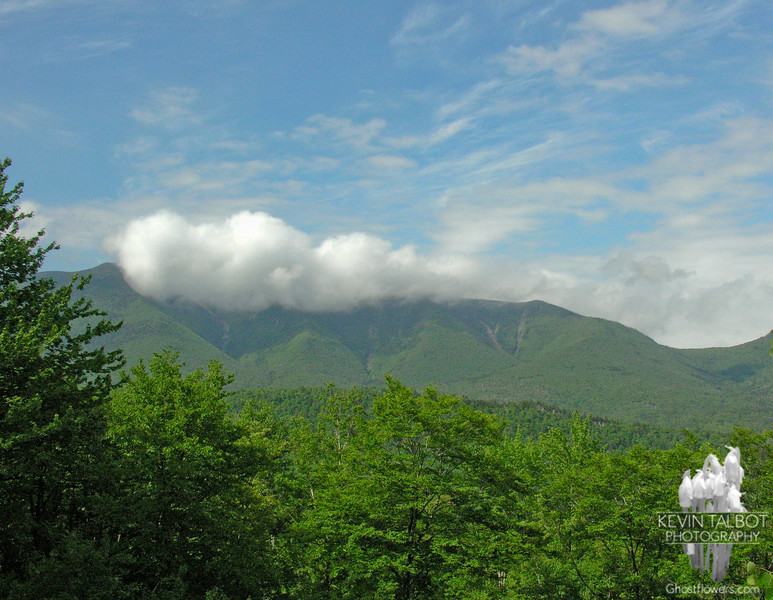 View of the Osceolas from the parking area on the Kancamagus Highway.