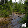 North Fork of the East Branch of the Pemigewasset River 2.