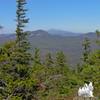 Mount Washington vertical.