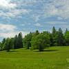 Across the Meadow 5.