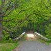 Bridge Path.
