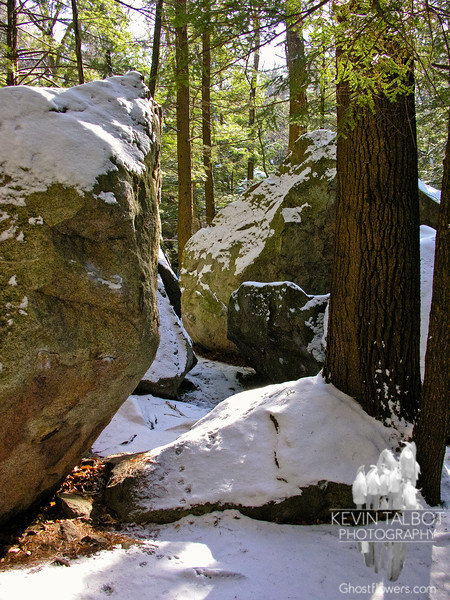 In the Boulder Field 3.